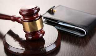 Судебная практика банкротства поручителя