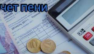 Калькулятор расчёта пени 1/300 ставки рефинансирования